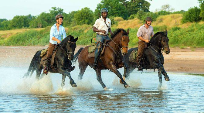 Something Different: Non-motorised Safaris