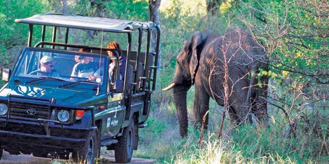 What to know about visiting South Africa