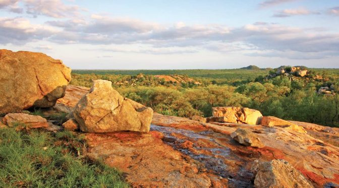 What are the best Kruger Camps to visit?