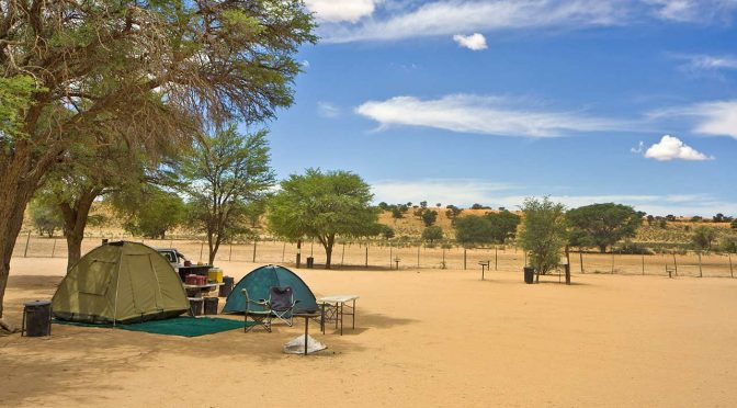 The Kgalagadi: Beautifully tranquil desert wilderness