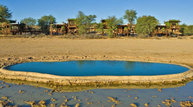 The Kgalagadi: Wilderness Camps