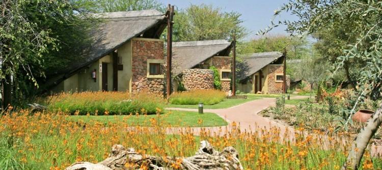 Tau Game Lodge Madikwe